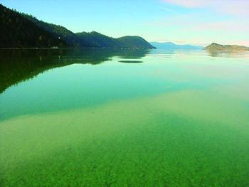 Klamath_Lake_AFA_Bloom